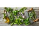 Kurzy praktického využití bylin | Slevomat