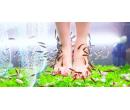 Koupel nohou s rybkami Garra Rufa | Slevomat
