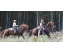 3 hodiny u koní a projížďka podél Berounky | Slevomat