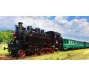 Jízdenka na parní vlak a vstup na paro-festival | Slevomat