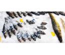 Kilo ryb do kuchyně i na venkovní gril | Slevomat