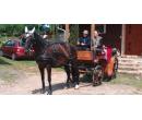 Jízda historickým kočárem taženém koněm | Slevomat