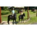 Péče o koně a hodinová jízda | Slevomat