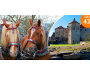 20min. projížďka kolem hradu Švihov +  2 vstupy | Hyperslevy