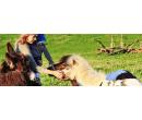 Celodenní rodinná vstupenka do farmaparku | Sleva Dne