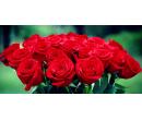 Kytice 11ti 50 cm dlouhých holandských růží | Slevomat
