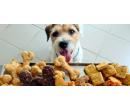 Balíček psích pamlsků v ceně 800 kč | Radiomat