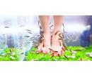 30 minut relaxační péče o nohy rybkami Garra rufa | Slevomat