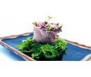 6hodinový kurz foodstylingu | Slevomat