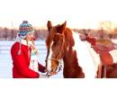 60 minut jízdy na koni pod dohledem instruktora | Slevomat