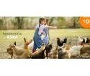 Farmářem na zkoušku pro 1 osobu nebo rodinu  | Hyperslevy