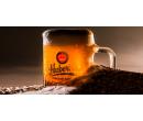 Prohlídka pivovaru Kácov s degustací | Slevomat