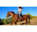 Vyjížďka na koni v Moravském krasu | Slevomat