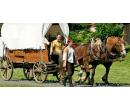 Rodinná jízda koňským povozem na Křivoklátsku | Slevomat