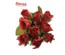 9 prémiových růží El Toro v délce 40 cm | Slevomat