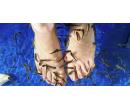 Koupel nohou s rybkami Garra Rufa na 30 min | Slevomat