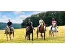 Vyjížďka na koni do přírody   Slevomat