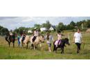 Na hřbetě fjordských koní po Malšovických lesích | Slevomat