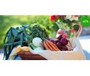 3 bedýnky plné zeleniny a ovoce  | Radiomat