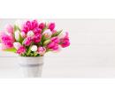 9 holandských tulipánů | Slevomat