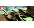 Zážitková střelba na střelnici   Slever