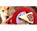 Voucher v hodnotě 300 Kč do kočičí kavárny  | Slevomat