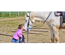 Hrátky se zvířátky na farmě a jízda na koni | Slevomat