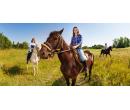 Den plný zážitků s koňmi pro 1 osobu  | Slevomat